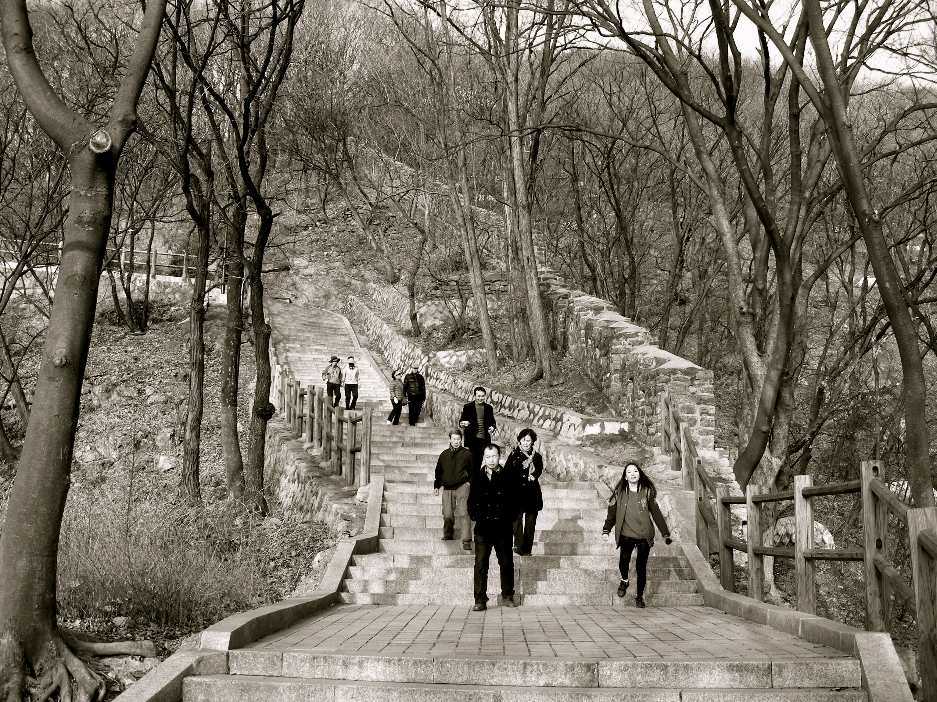 Hiking Namsan