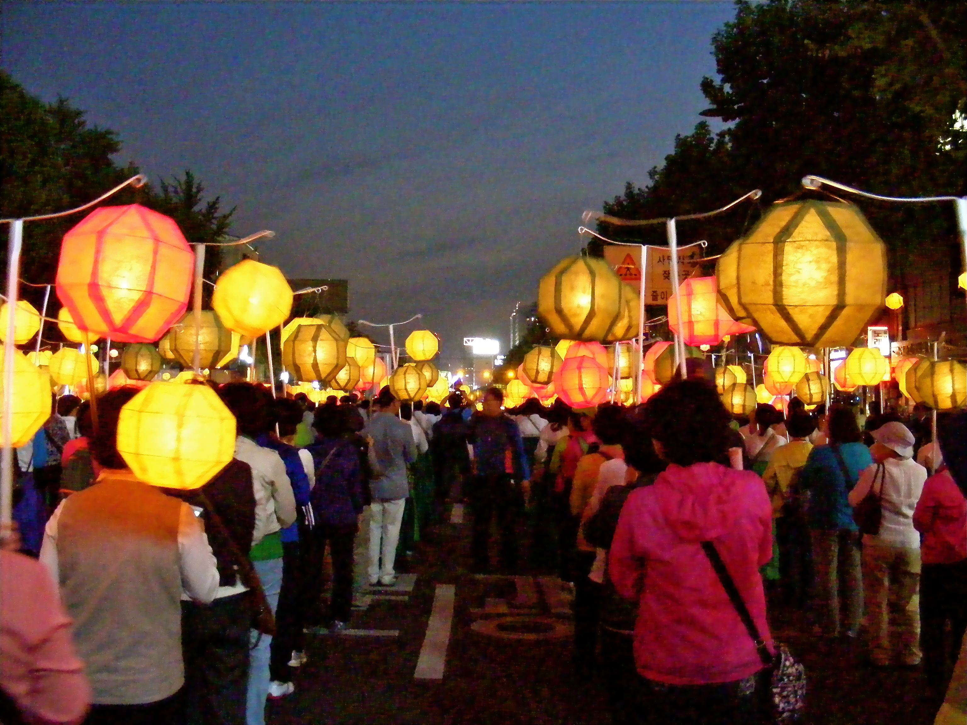 Paper Lanterns at Lotus Lantern Festival in Seoul