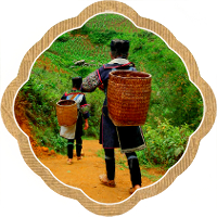 Thumbnail image for Tips for Trekking in Sapa, Vietnam