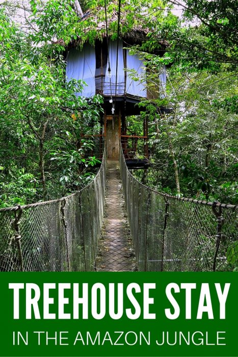 Jungle Treehouse Stay in the Amazon
