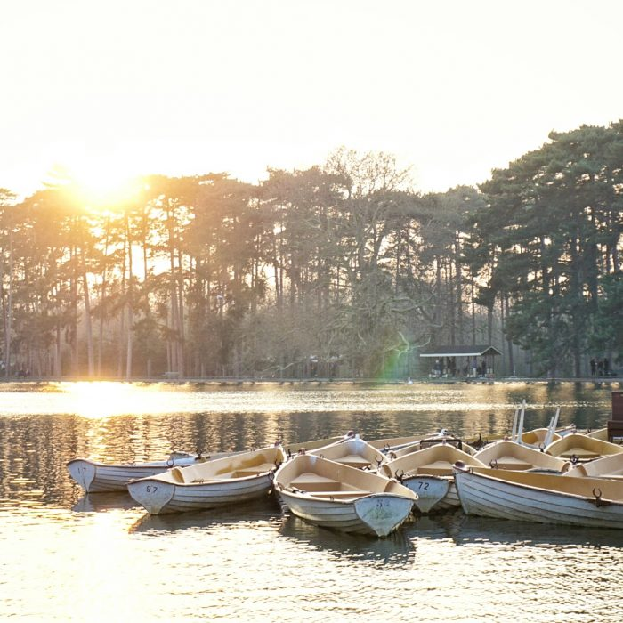 Another unusual things to do in Paris: head to Bois de Boulogne and rent a boat!