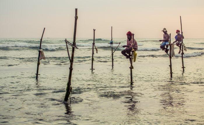 Stil fishermen in Galle, Sri Lanka