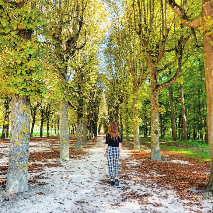 Fontainebleau: A fun day trips from Paris to bring you close to nature.