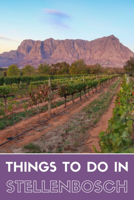 Things to do in Stellenbosch | South Africa Travel Guide