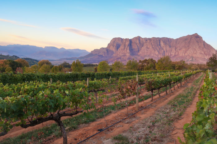 Things to do in Stellenbosch, South Africa | Travel Guide